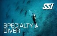 SSI Special Diver - продолжить обучение дайвингу