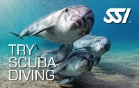 Курс Try Scuba - Вводный курс дайвинга