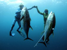 Обучение подводной охоте в Москве