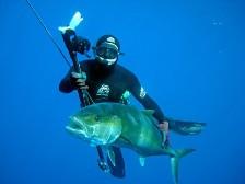 Курсы подводной охоты