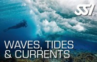 Курс волны, течения, приливы